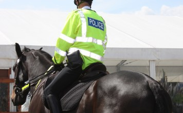 Police officer on horseback. Both horse and person are shown from behind
