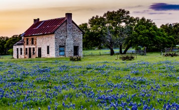 photograph of a Texas homestead at dusk surrounded by wilflowers