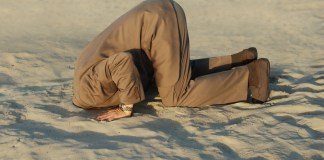 photograph of business man with his head buried in the sand