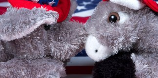 photograph of stuffed Republican elephant and Democrat Donkey face-to-face atop American flag