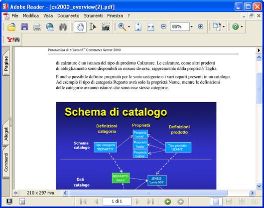Il  documento convertito in Adobe Acrobat.