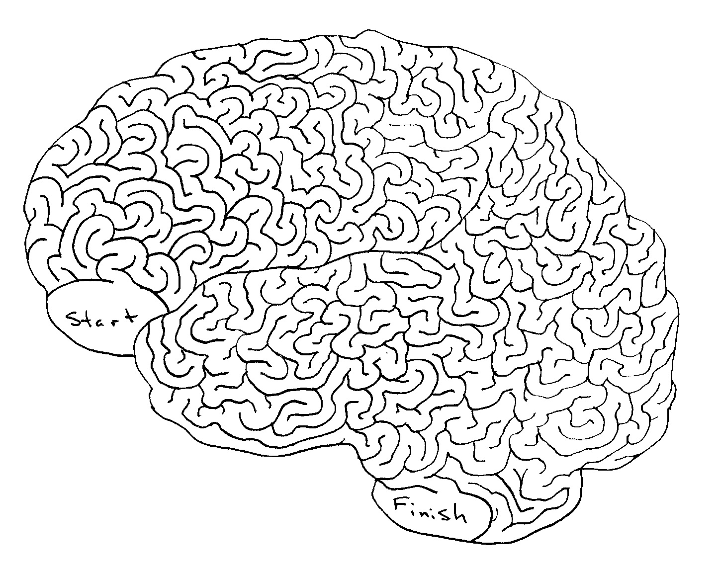9 Best Images Of Brain Maze Printable