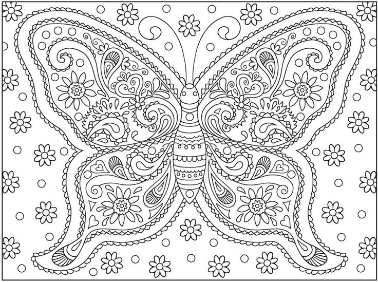 6 Best Images Of Hard Butterfly Coloring Pages Printable Hard Butterfly Coloring Pages Adult Hard Butterfly Coloring Pages Adult And Free Butterfly Coloring Pages Printablee Com
