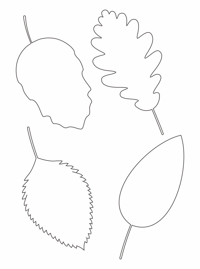 6 Best Leaf Tracers Printable Printablee Com