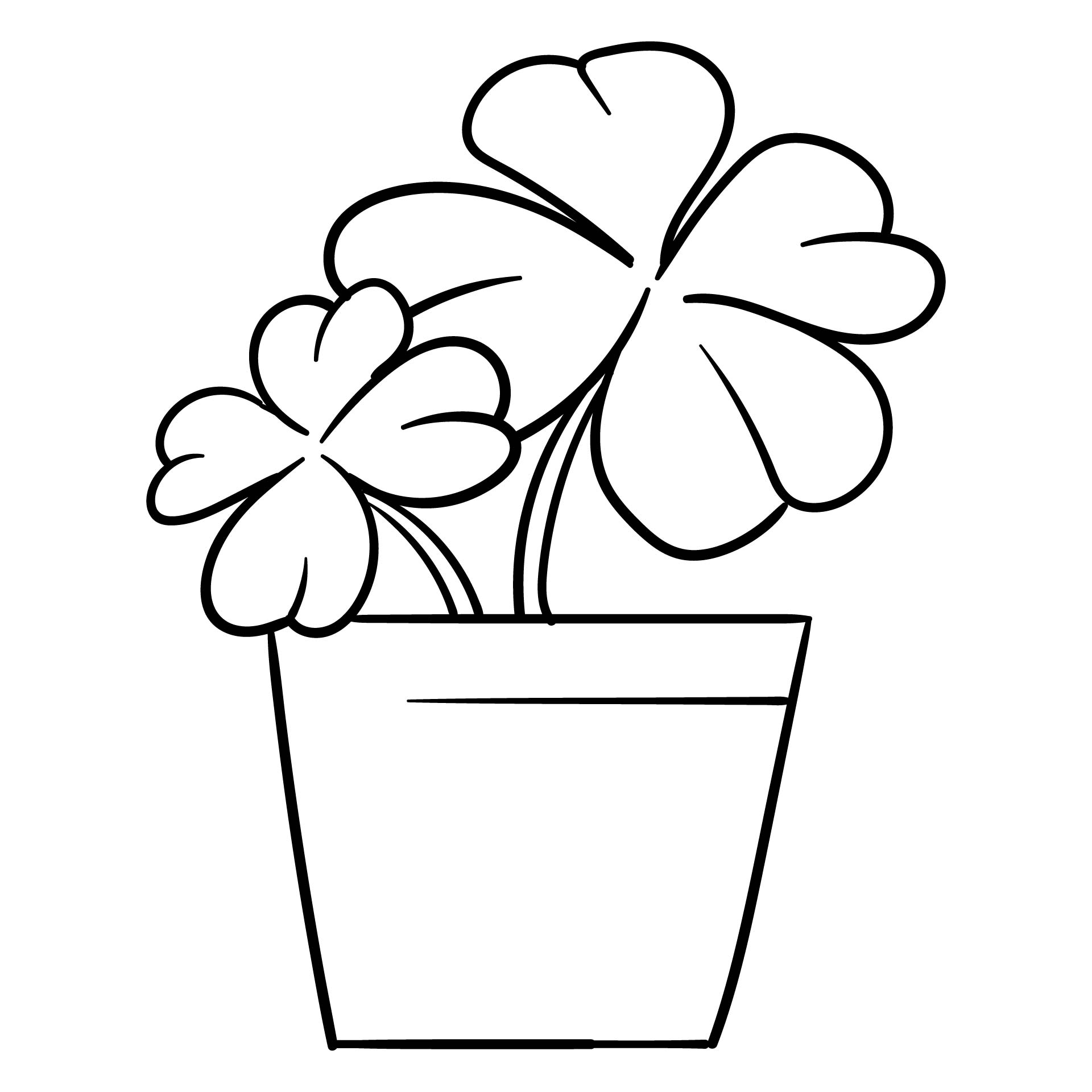 pics photos shamrock printable coloring image use it for coloring or