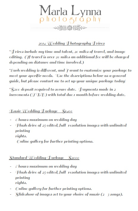 Free Sample Wedding Photography Price List Templates  Printable