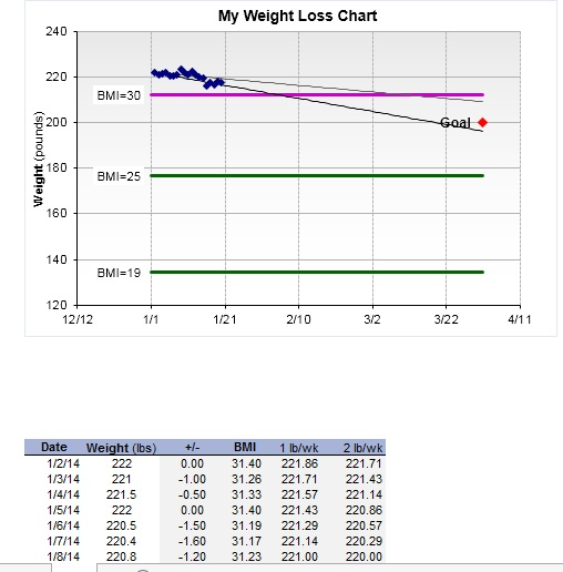 13 Free Sample Weight Loss Log Templates – Printable Samples