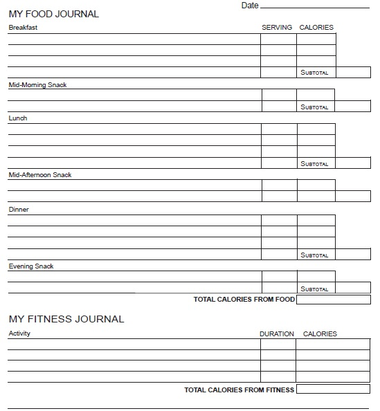 11 Free Sample Food Log Templates – Printable Samples