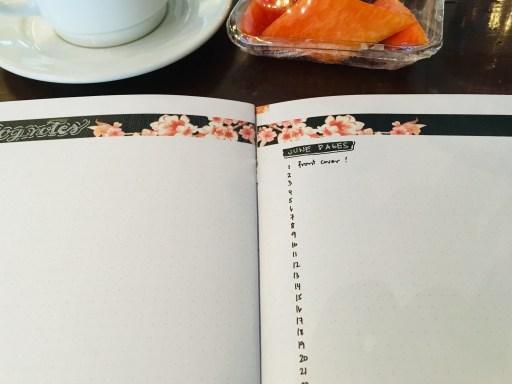 Bullet journal layout ideas - free printable cherry blossoms planner pages. #diyplanner #freeprintable #printablesandinspirations #bulletjournal #bujoideas #cherryblossoms #sakura