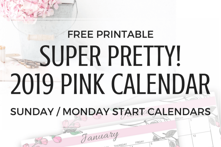 2019 calendar free printable in floral pink color, monthly calendar for 12 months of the year, Sunday and Monday start calendars. Get your free download now!