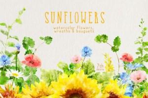 Beautiful sunflower clipart