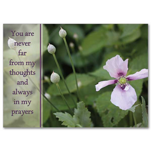 Always In My Prayers Praying For You Card