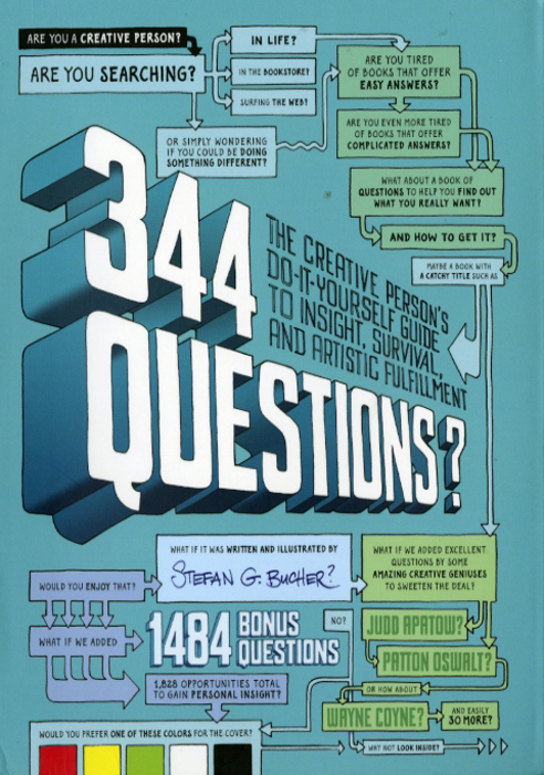 344 Questions? The Creative Person's Do-It-Yourself Guide to Insight, Survival, And Artistic Fulfillment