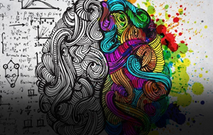 Thumbnail for The Interaction Between the Brain Hemispheres While Drawing