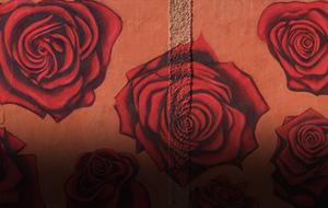 Thumbnail for Morocco's Street Art Renaissance