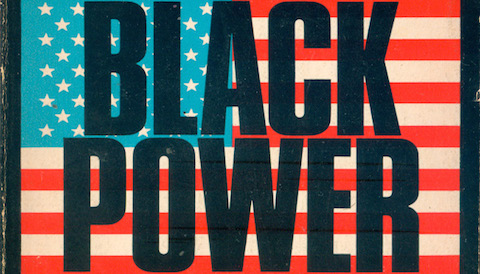 Thumbnail for Power, Fists, Guns, Books: Black Power & Book Cover Design