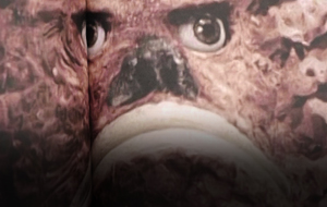Thumbnail for Weekend Heller: Godzilla, Astro Boy, Ultraman, Kikaider and Company
