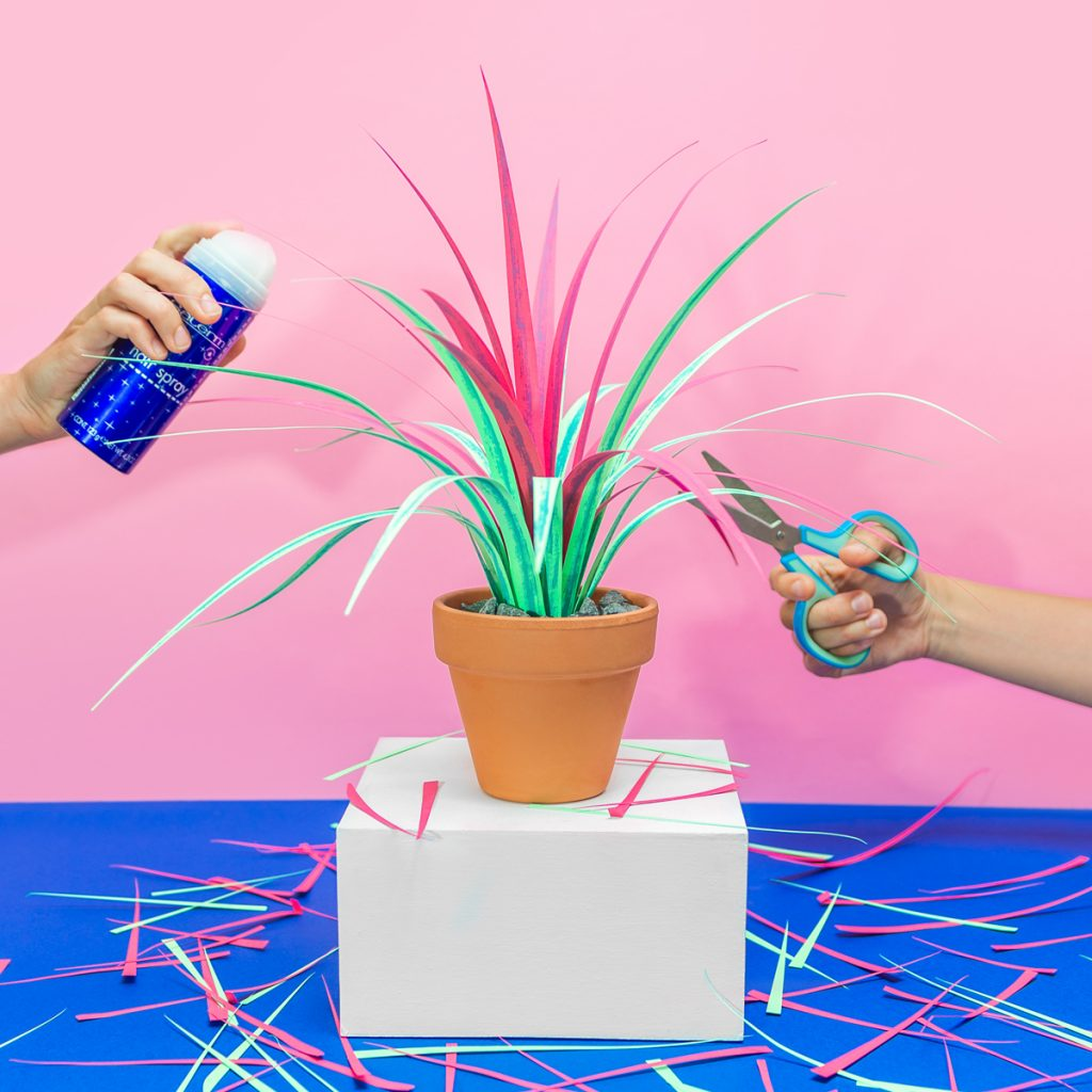 Thumbnail for Tired of Killing Your Plants? Jungla's Paper Alternatives Might Be Your Saving Grace