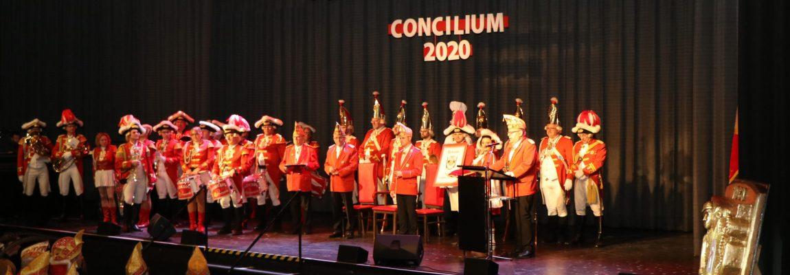 Knubbel Concilium 2020
