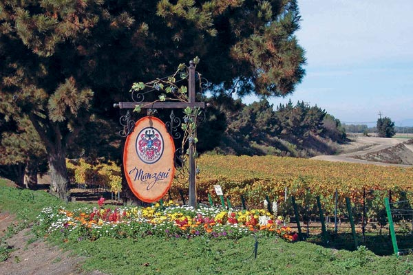 Manzoni Vineyards