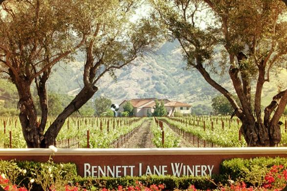 Bennett Lane Tasting Room and Vineyard