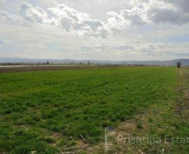 Fshati  Lepi - Graqanicë