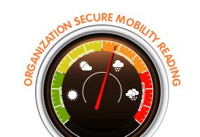 Secure mobilemeter