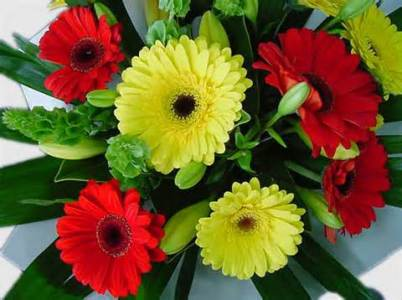 Indian Gifts Portal Announced On time Flowers Delivery in India     send flowers to india2