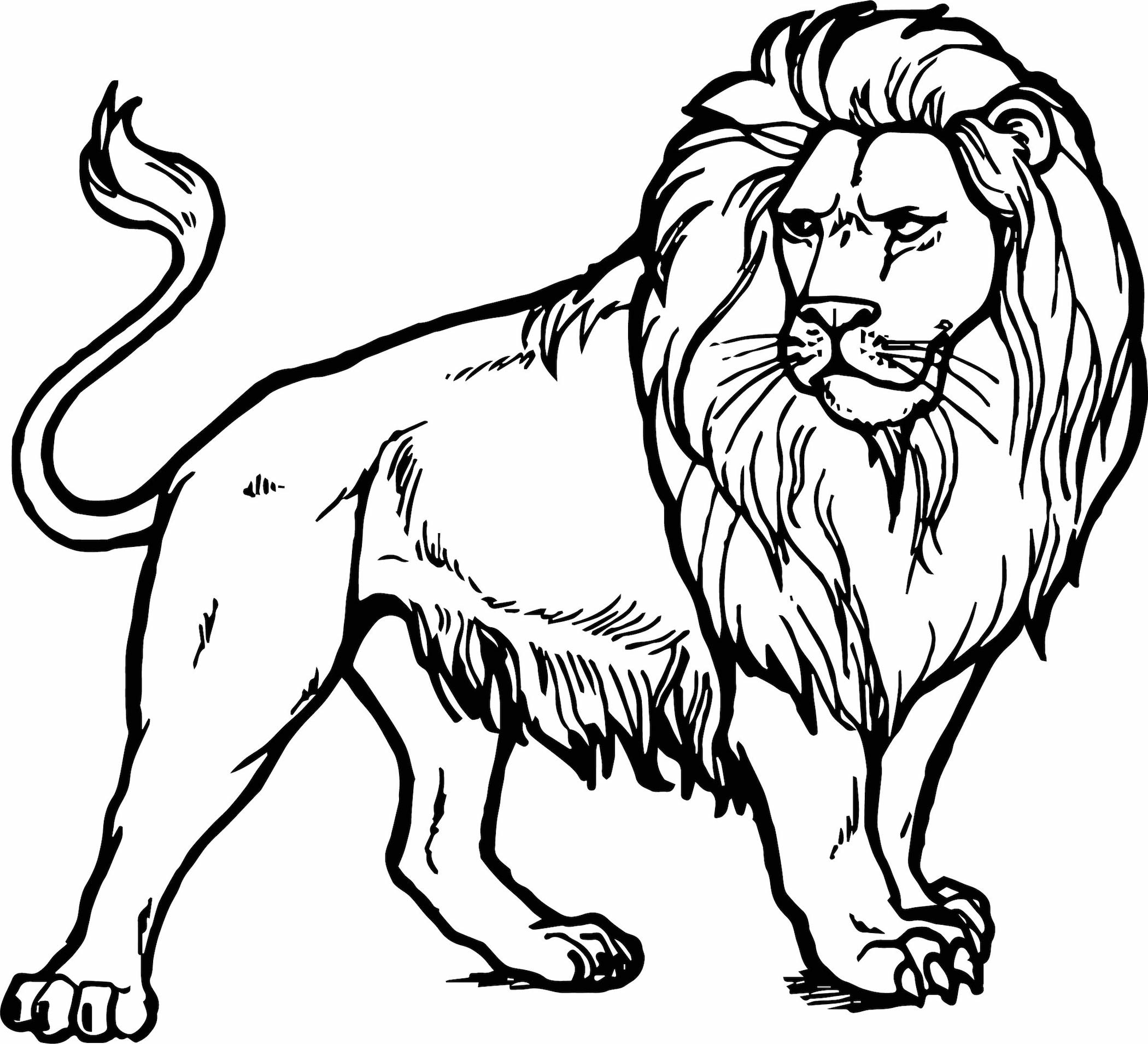 Lion Coloring Pages Clipart And Other Free Printable