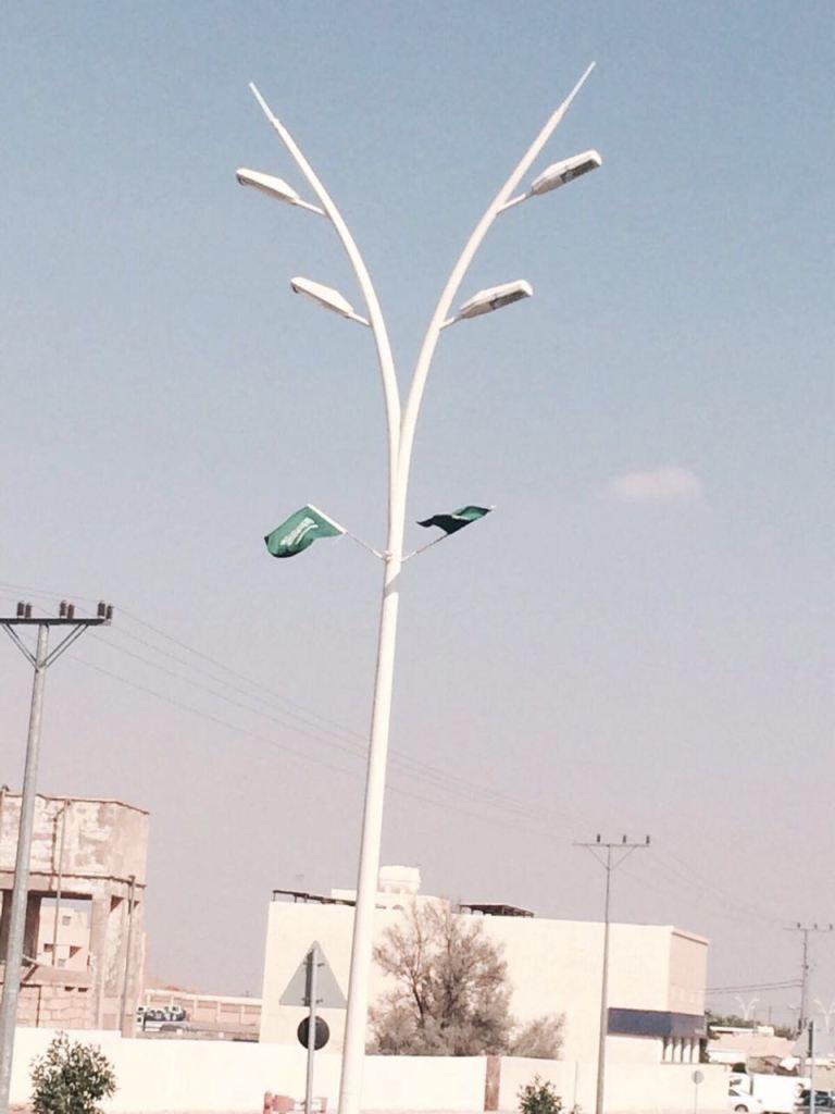 تنسيق حدائق زهر بالسعودية , شركة لتنسيق الحدائق بالسعودية