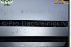 pro dachreinigung754