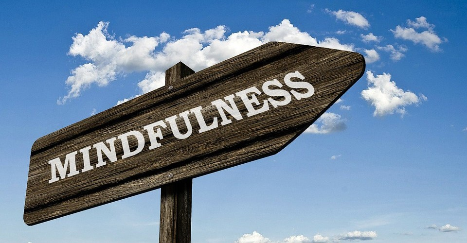 Mindful, or mind full? Bringing mindfulness to EHS - Part 1