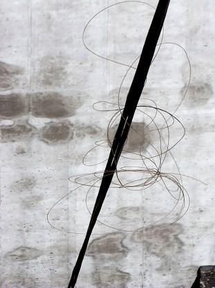 Daryl-Ann Saunders