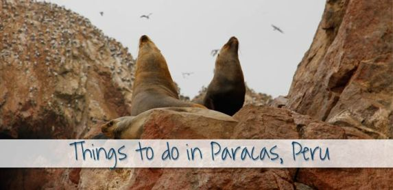 Top 2 Things to do in Paracas, Peru