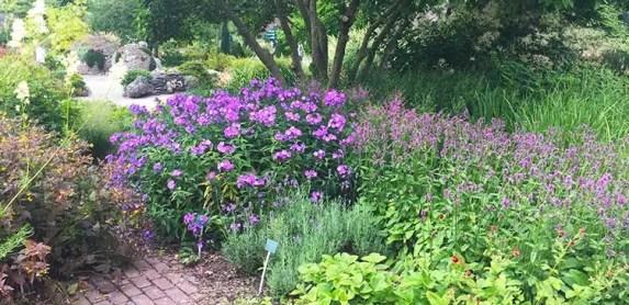 Botanic Garden in Utrecht, the Netherlands
