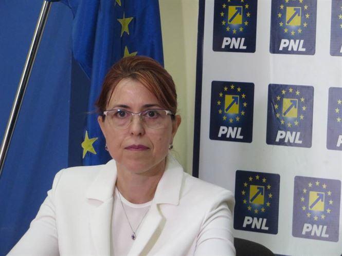 PSD se opune modernizării României