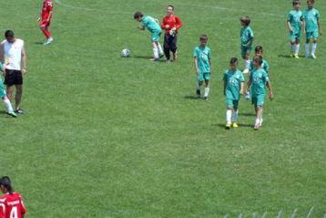 Doua echipe din Braila participa la Cupa Delfinul