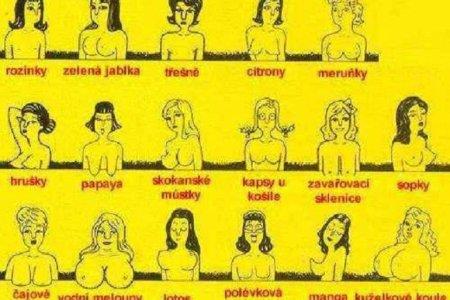 Jak dělíme ženská prsa?