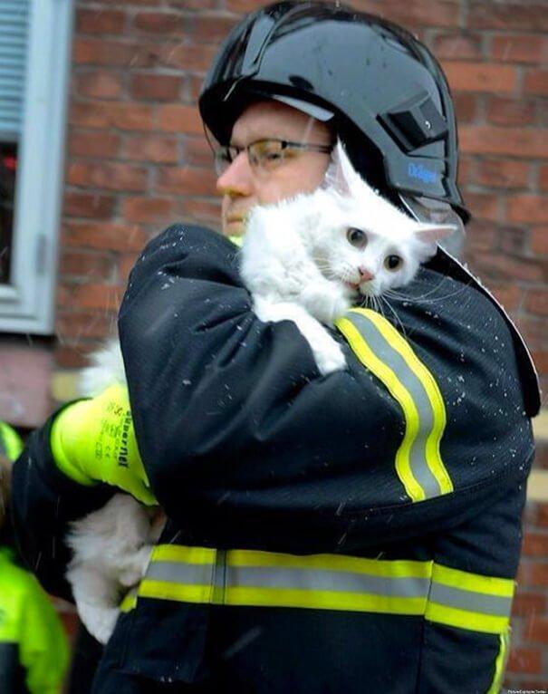 hasici-zachrana-zvirat-13