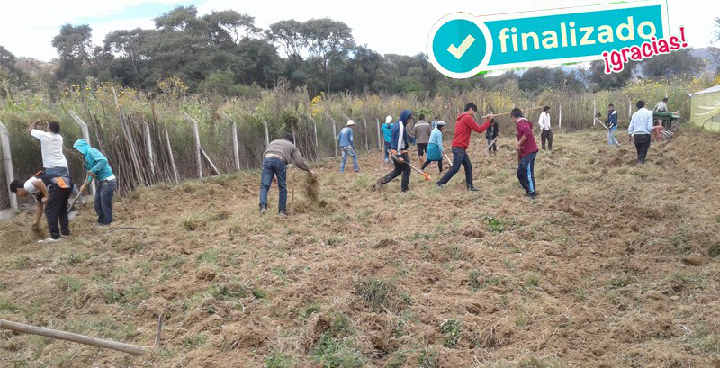 granja lechera cetha. Proyecto en Bolivia