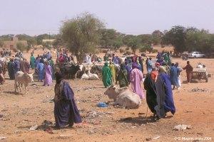 Téfankés, dioulas et acheteurs au marché de Thillé Boubacar