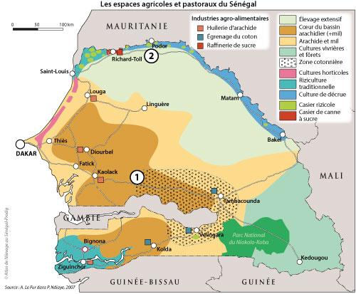 Sénégal-Les territoires de l'élevage-L'élevage et le zonage agro-climatique-Les espaces agricoles et pastoraux du Sénégal