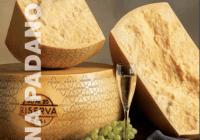 Le differenze tra Parmigiano Reggiano e Grana Padano: i disciplinari