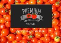 Sugo alla salsa di pomodorini Bottega di Sicilia e totani