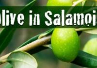 La salamoia perfetta per olive fatte in casa
