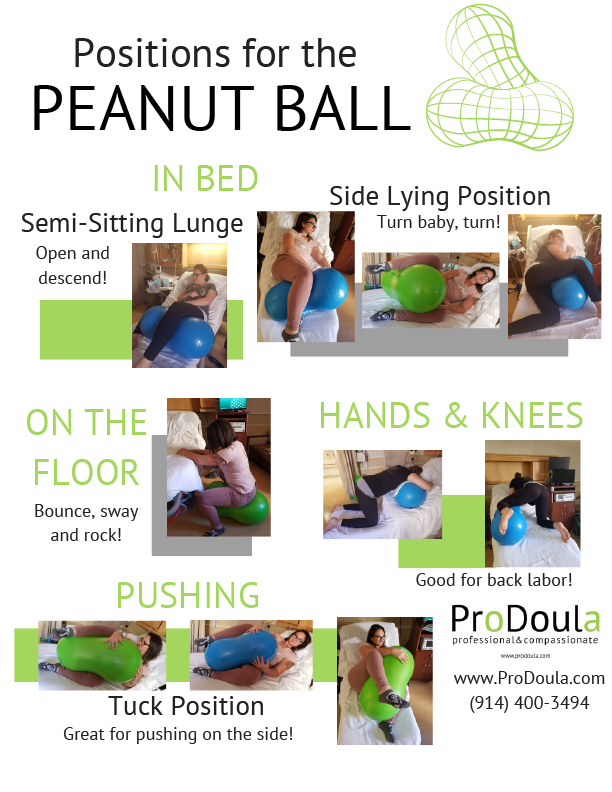 Peanut Ball Labor Positions