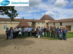 Pfizer acerca la genética francesa a los profesionales españoles de vacuno de carne