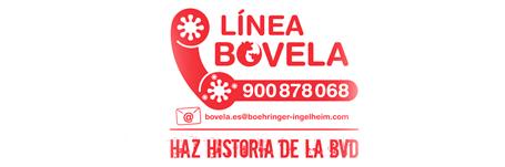 Boehringer Ingelheim pone en marcha Línea Bovela®, un servicio gratuito de información y resolución de dudas para veterinarios y ganaderos de Vacuno