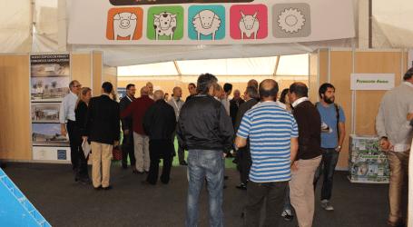 Programa provisional del Simposium Internacional de Porcinocultura en SEPOR