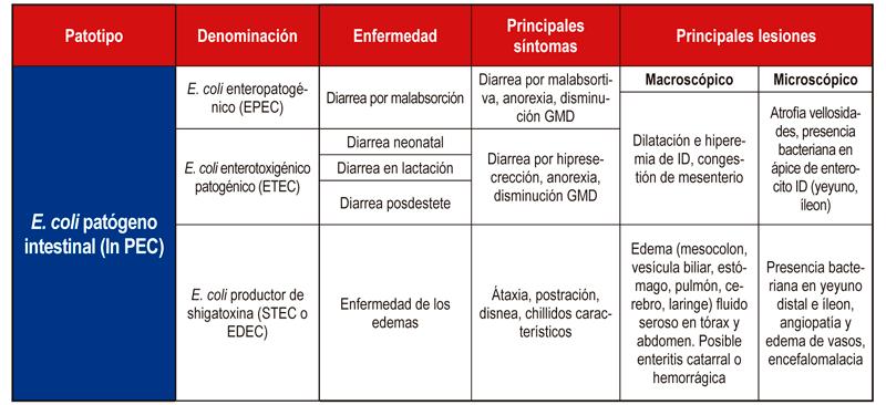 Tabla 1. Principales síntomas y lesiones de los patotipos intestinales de E. coli.